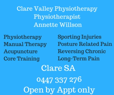 AppliedPostureRidingPhysiotherapy Annette Willson 2 web